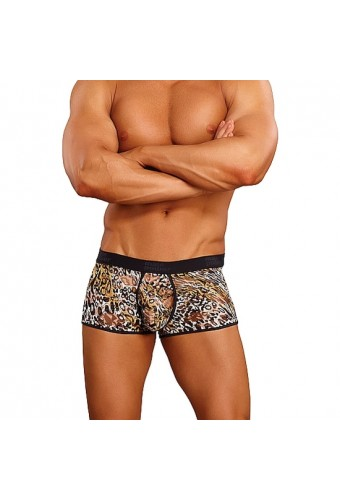 MALE POWER SHORT ESTAMPADO LEOPARDO MARRON